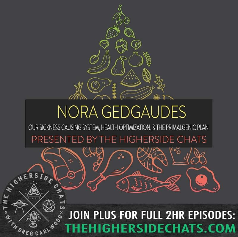 Nora Gedgaudes Primal Body Mind Interview on The Higherside Chats
