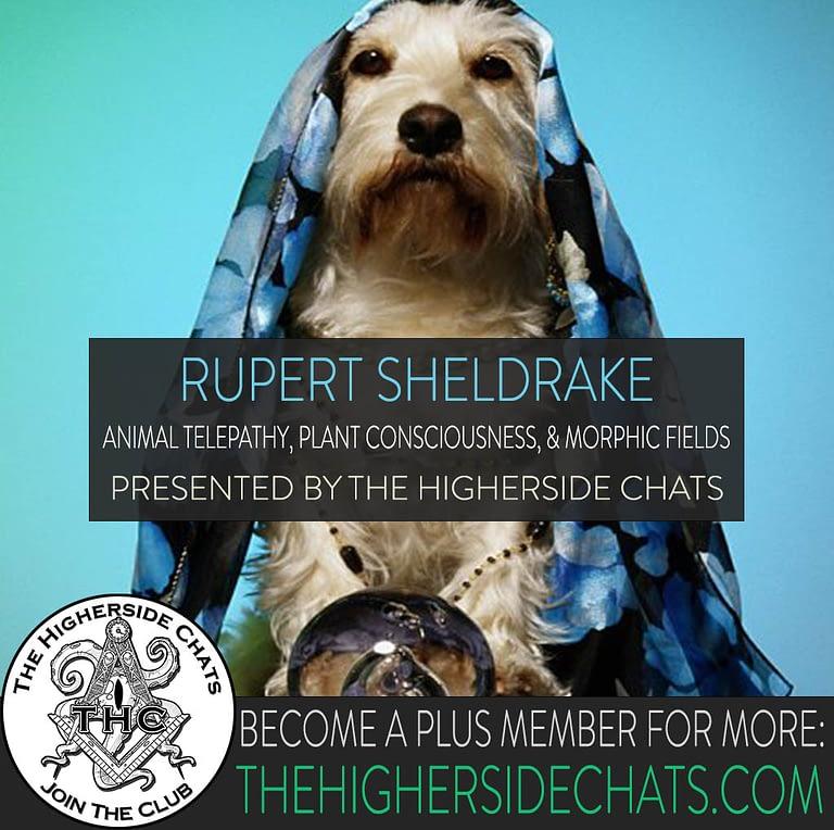 Rupert Sheldrake Interview on Morphic Fields The Higherside Chats Podcast