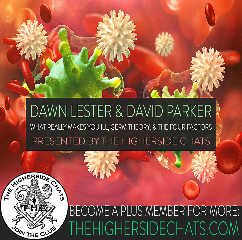 Dawn Lester David Parker Germ Theory Interview on The Higherside Chats Podcast